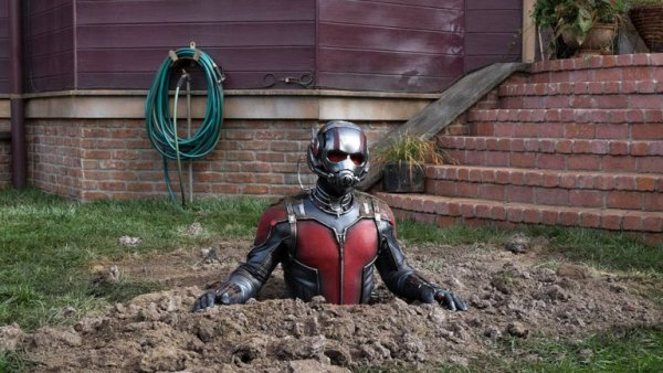 The instructions just said plant your Ant Man; water regularly; and wait.